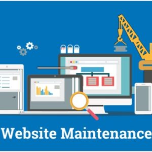 Website Maintenance - ECONOMY